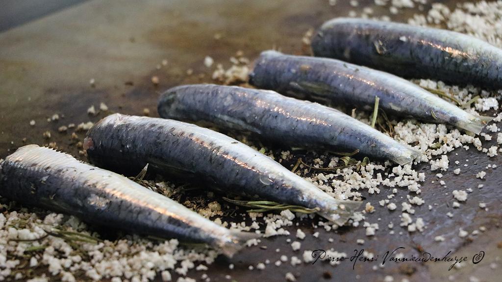 Recette de sardines à la plancha au gros sel de Guérande ...